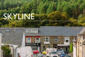 Skyline - The Feasibility Project