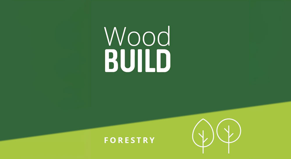 Trees and Timber   WoodBUILD Podcast with Tom Barnes and Andrew Bronwin